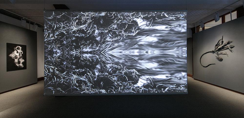 4-Horochowski-Alexa.jpg