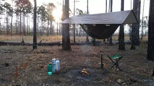 - Kyle Albinus, primitive camping in Ocala