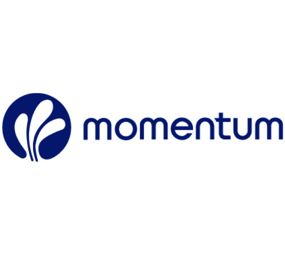 MOMENTUM:  Building momentum for a city where every person can have  a sustainable livelihood and contribute to community.     Sustainable Livelihood Model + C  ommunity Economic Development       #CED  #yyc