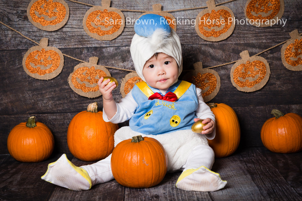donald-duck-themed-baby-photo.jpg