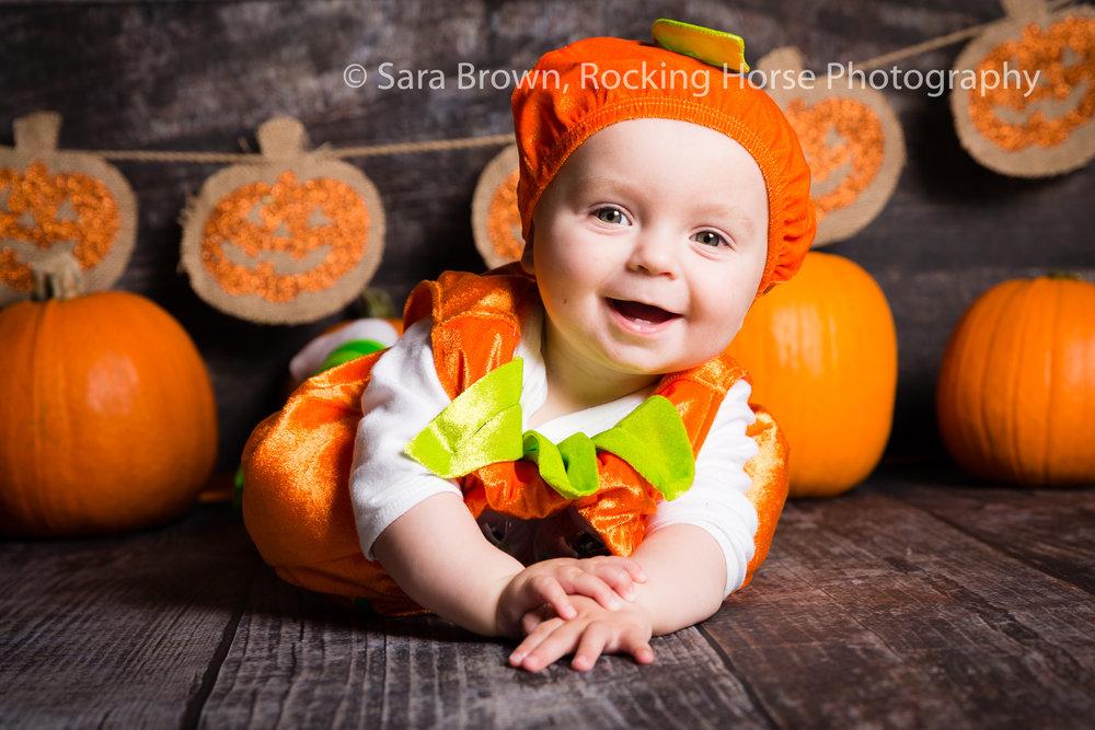 pumpkin-baby-photo-themed-3L4A3612.jpg