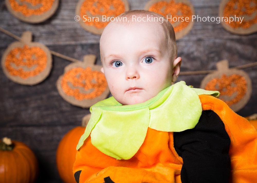 pumpkin-photo-baby-sensory-3L4A1926.jpg