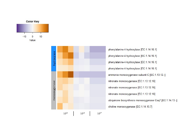 Counts of significantly differentially expressed genes (likelihood ratio,  p adj < 0.05) that were also significantly associated with EE2 biotransformation (Spearman,  p  < 0.05). The vertical bar on the left shows monooxygenase genes (grey) and hydroxylase genes (blue). Genes with the same name are unique sequences that were annotated with the same KEGG Orthology.