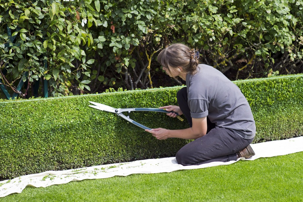 Professional landscaperswho need to quickly stabilize and kick-start plant and sod transplants.