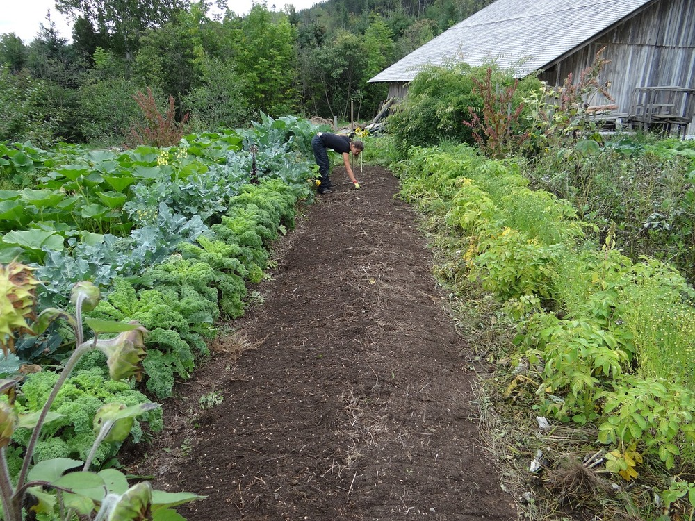 """Any gardenerwho wants to """"turbo-jump"""" the next growing season by prepping the soil in autumn."""