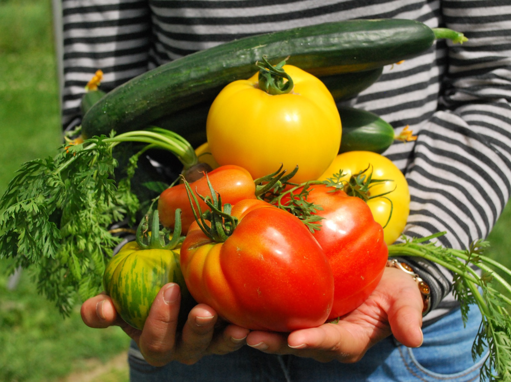 Vegetable gardeners who want to share, sell, or trade the most delicious, tender & nutritious harvest ever.