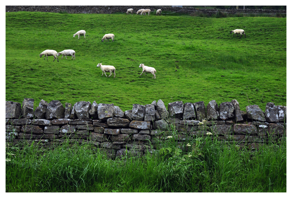 "6.3 	Stone Wall – ""Dry Stone Wall,"" George Rex, Flickr"
