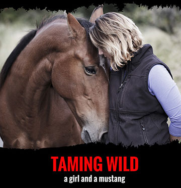 Taming_Wild_Movie_Poster.jpg