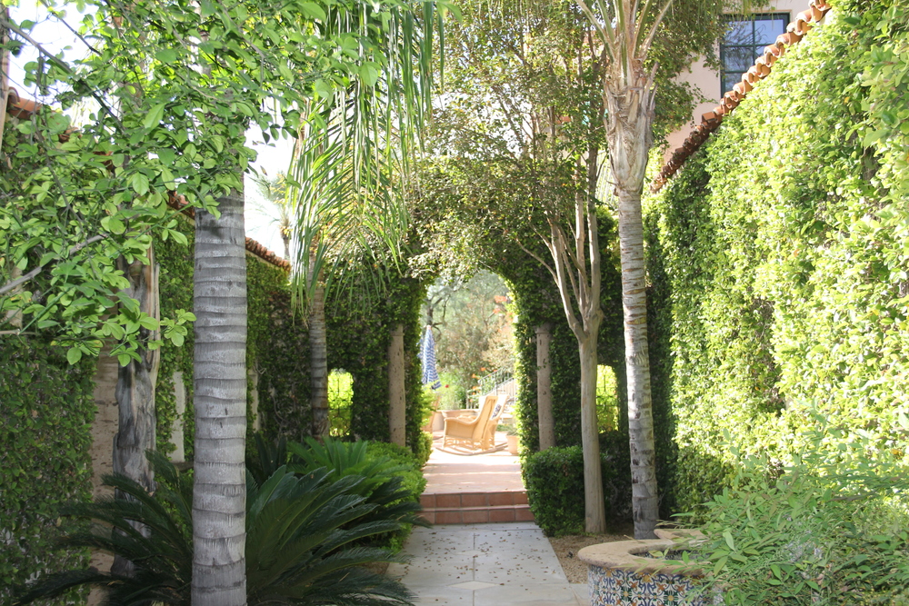cornerstone-landscaping-paradise-valley.JPG