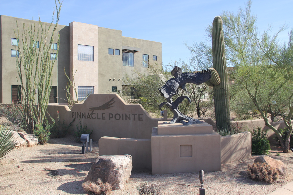 cornerstone-landscape-desert-1.JPG