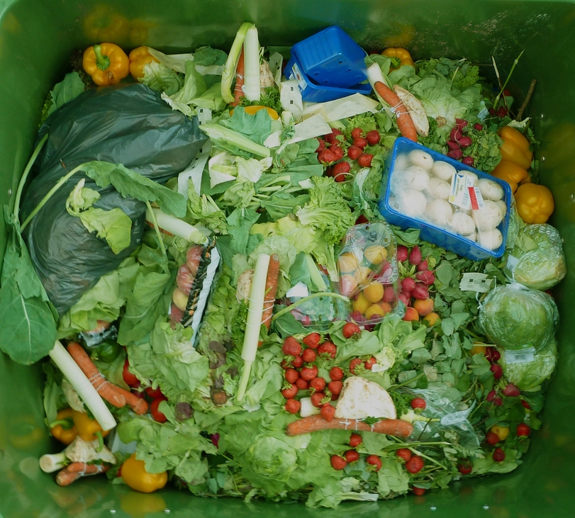 FOOD IS LIFE    SO WHY THROW IT AWAY?