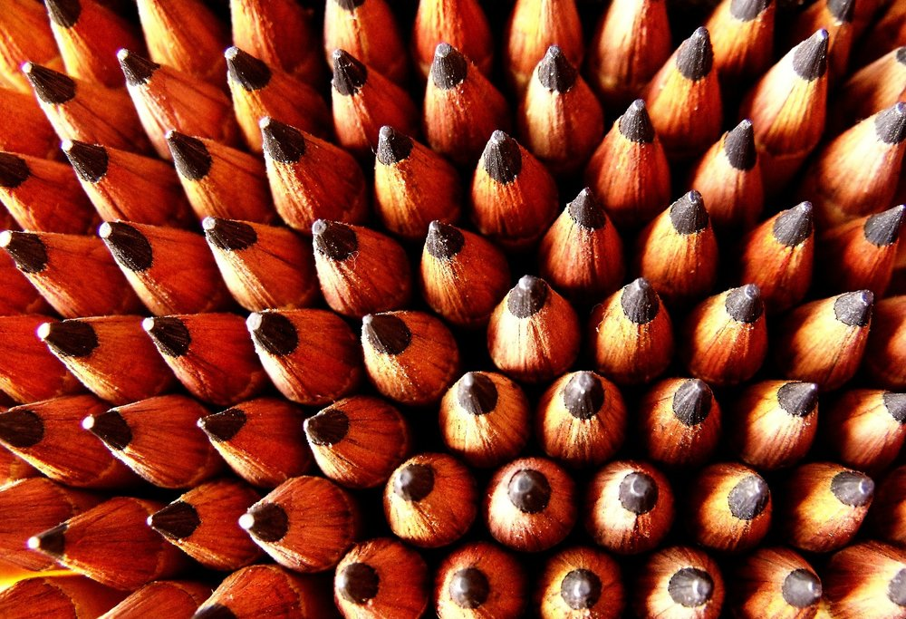pencils-21186_1920.jpg