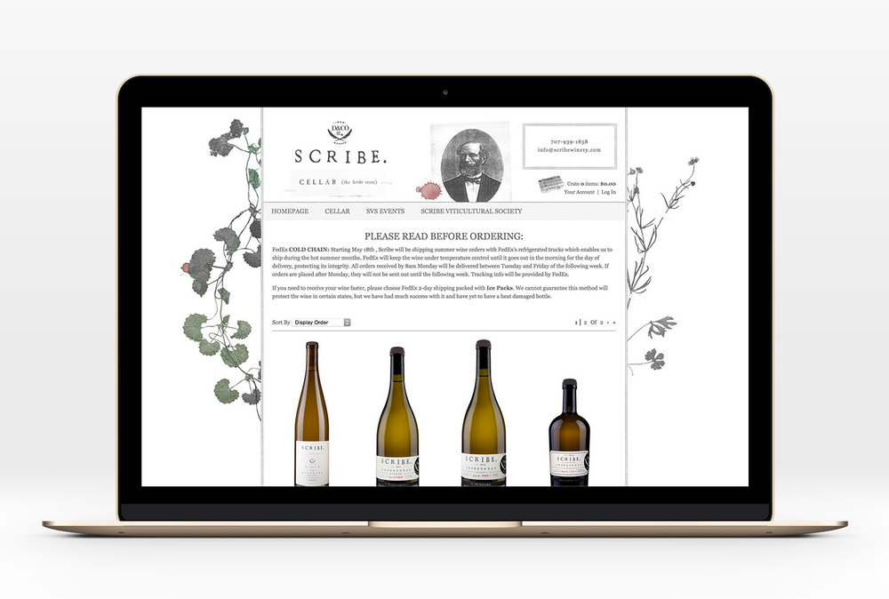 Scribe-Website-11.jpg