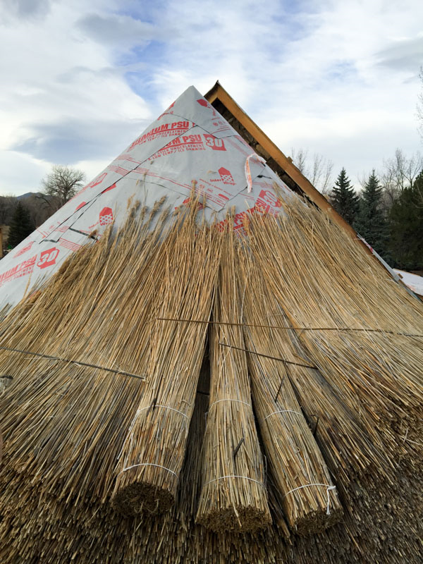 Laying out the thatch in bundles