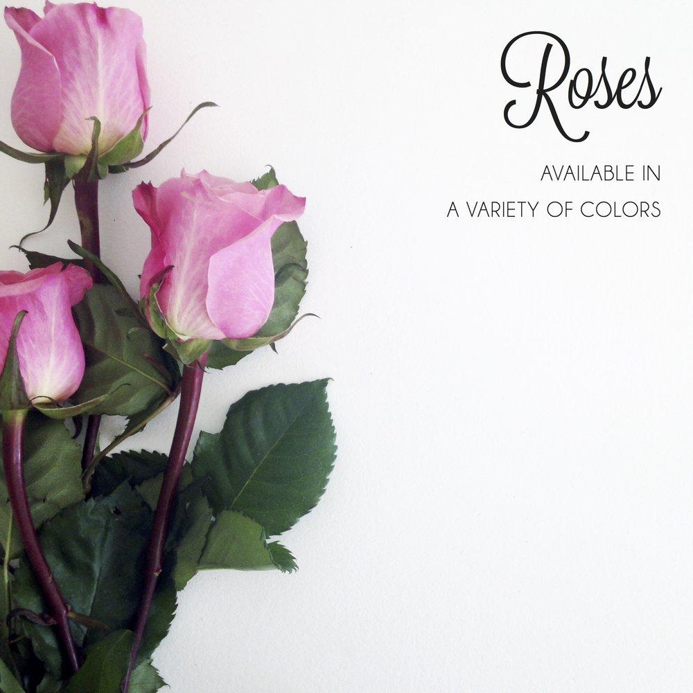 FLORAL-roses.jpg
