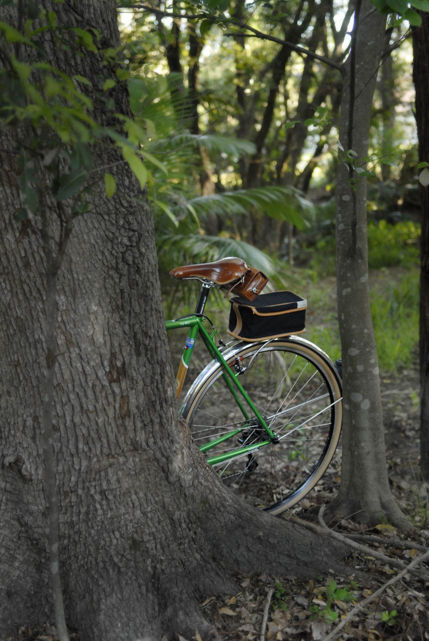 Green Llewellyn bike randonneur