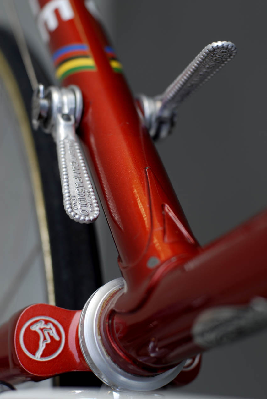 Gazelle bicycle fork crown detail