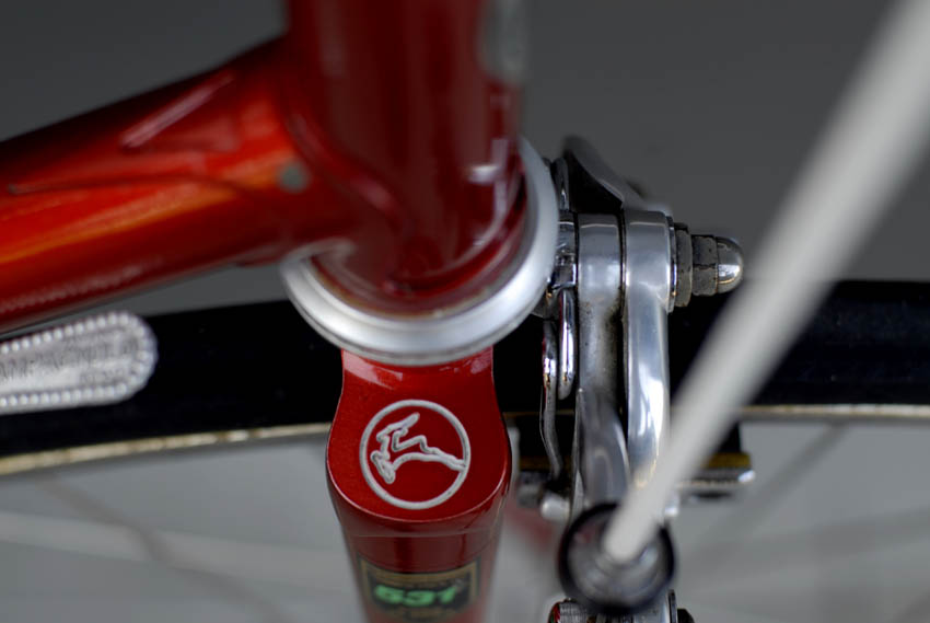 Gazelle Champion Mondial fork crown detail