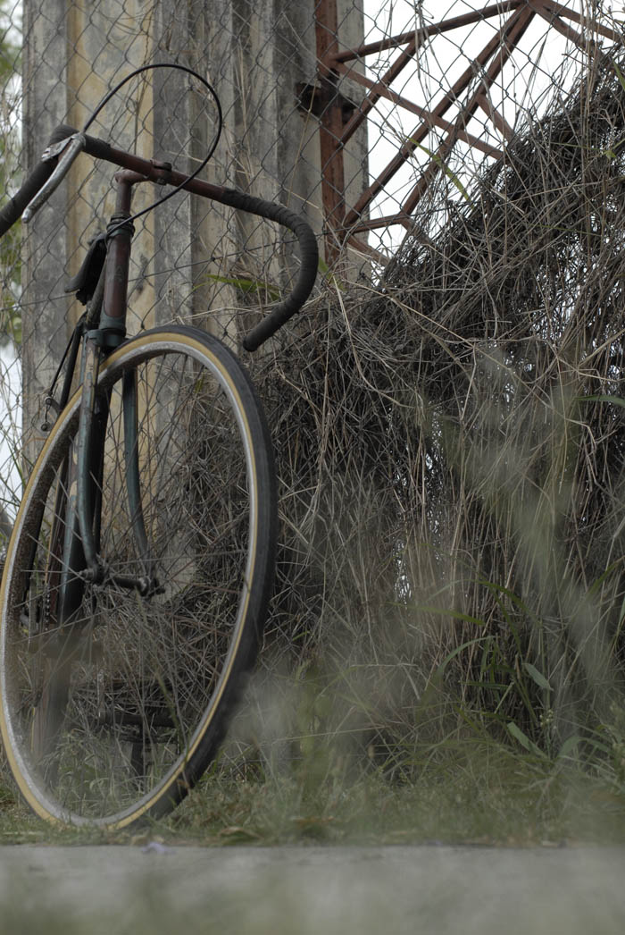 Arrow bicycle