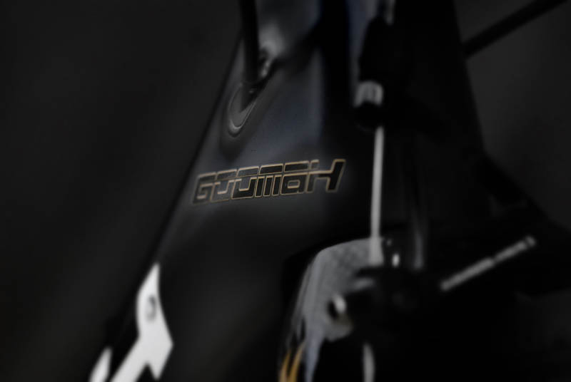 Assos team Goomah bike gold graphics