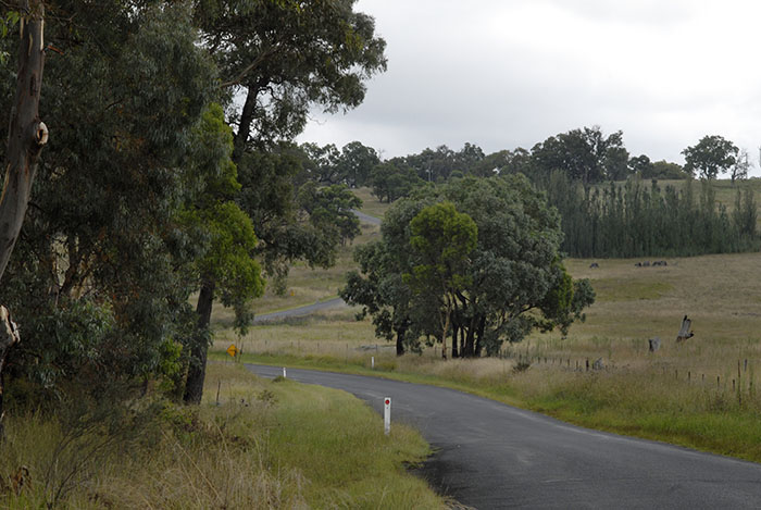 Undulating country around Armidale means you'll nearly always be climbing. The roads are relentless and strong winds will increase your cycling workload.