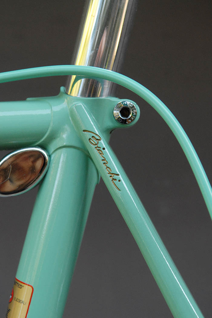 Bianchi engraved top eyes, with the Bianchi cursive script painted by hand in gold.