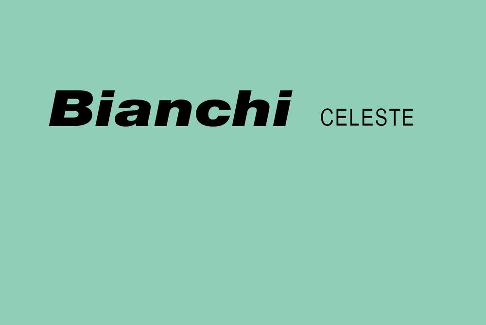 Bianchi Celeste Blue Paint