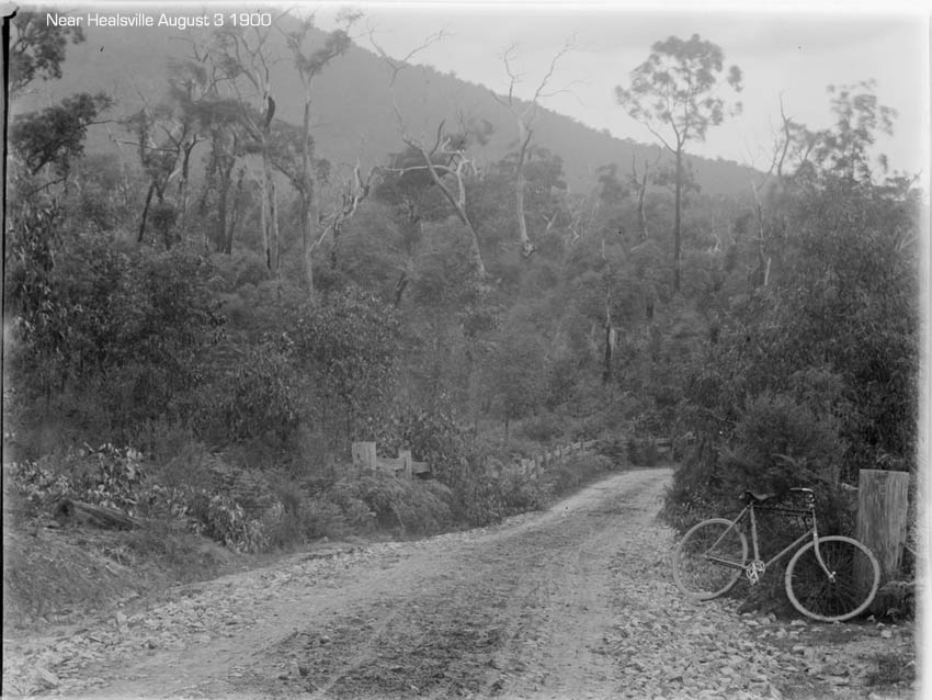 bicycle-near-healsville-1900.jpg