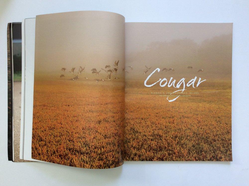 COUGAR: Kiawah's Undiscovered Island