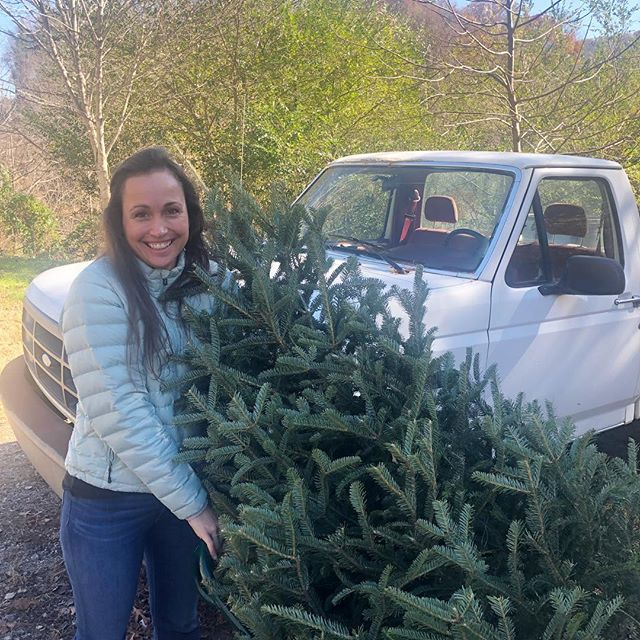 Admittedly, jumping the gun a little here...but it's beginning to look a lot like Christmas!🎄(The tree farm was also a great activity to get the kids outside!) #yayas #wnc #holiday #longweekend #itscolduphere