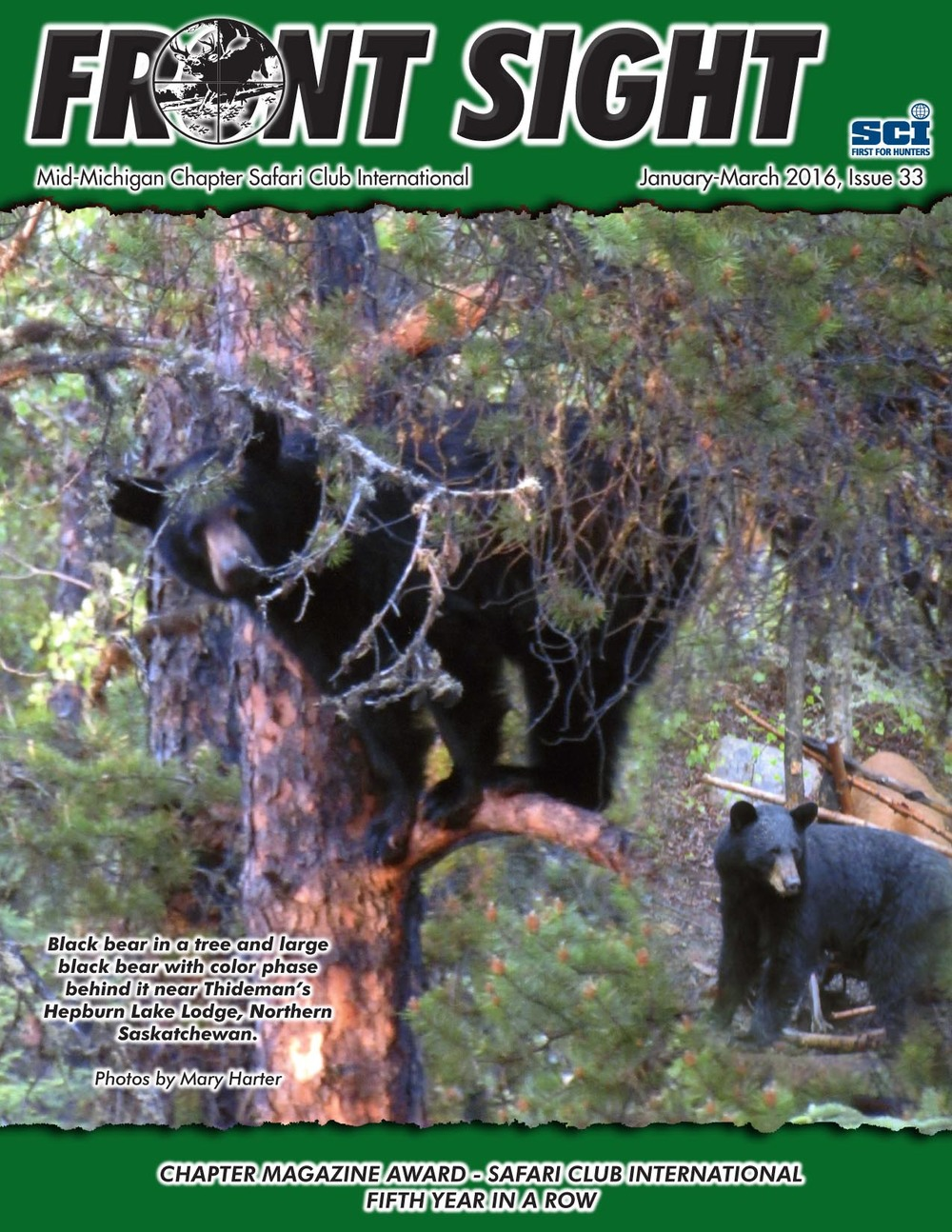Issue 33, January 2016