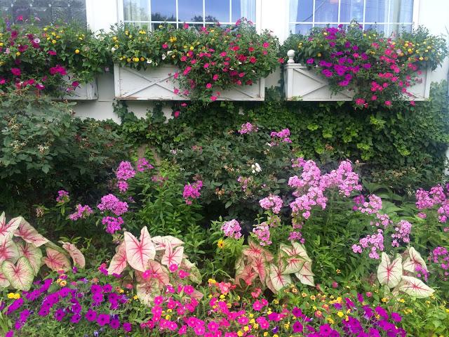 Mrs K's Gardens