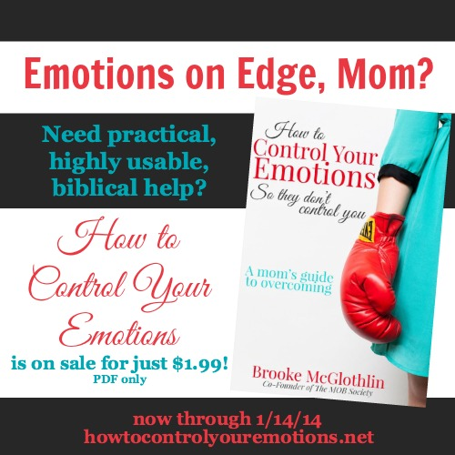 If being inside way too long has your emotions all out of whack, this short resource might be just what you need! Only $1.99 for the PDF through 1/14/14!