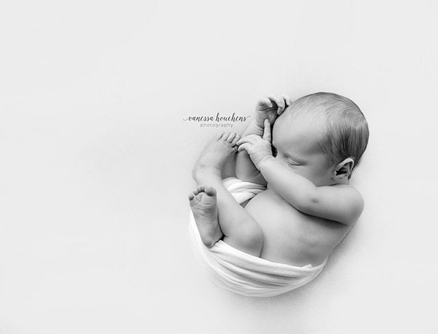 I feel like this is what she looked like before she was born... all curled up and sleepy. Good grief I love my job. #lovemyjob #girlboss #newborn #newbornphotography #newbornphotographer #newbornwrap #alabamanewbornphotographer #alabamanewbornphotography #alabamanewborn #alabamaphotographer #babyphotographer #babyphotography