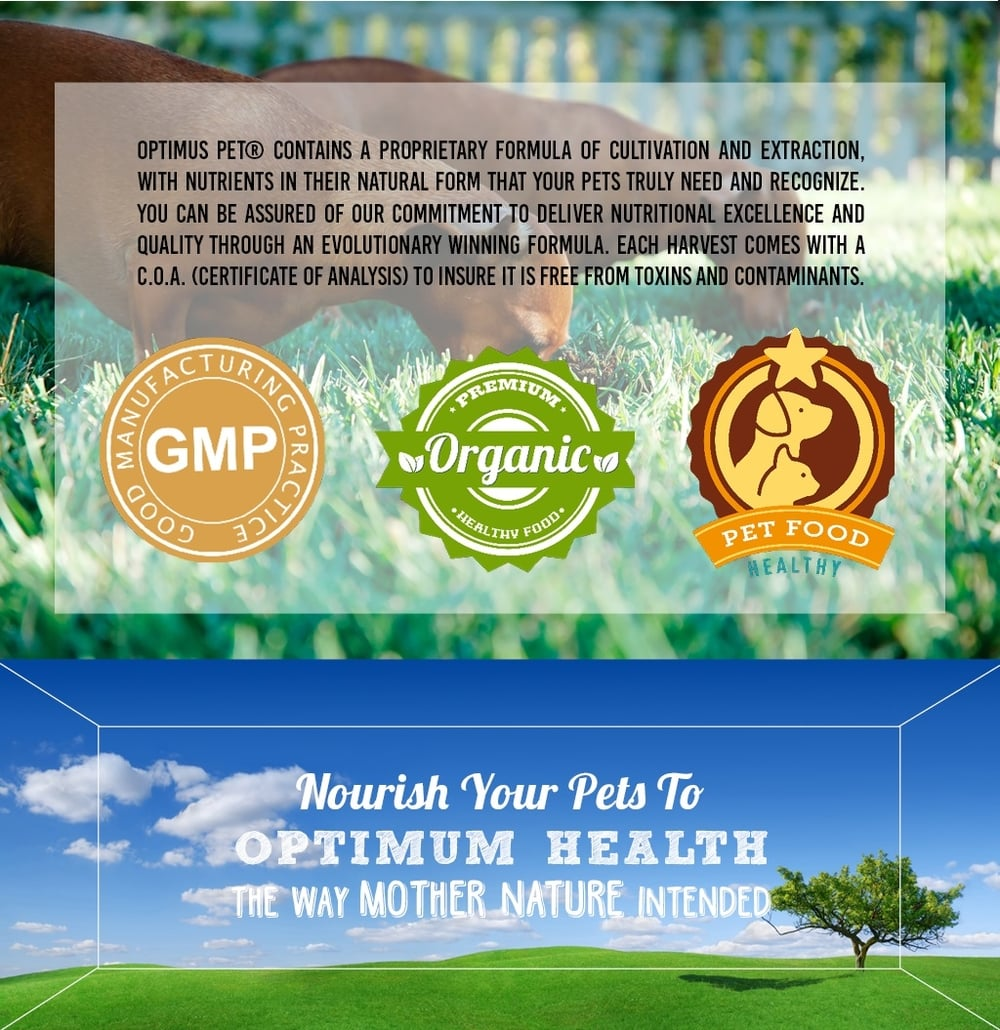 Nourish your pets to Optimum Health the way Mother Nature intended