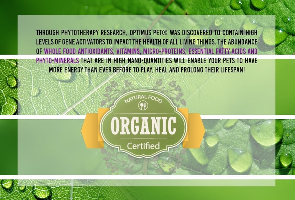 Natural Food Organic Certified. High levels of Gene activators.