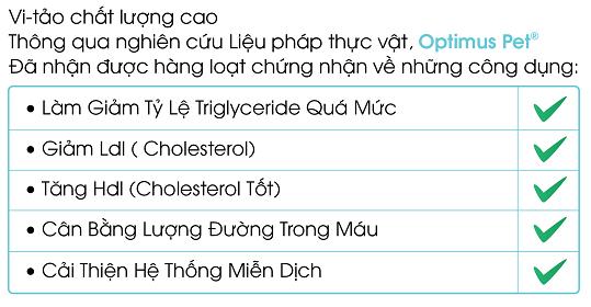 [Vietnamese]