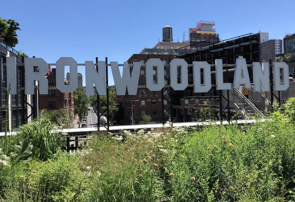 Sculpture along High Line 3.jpg