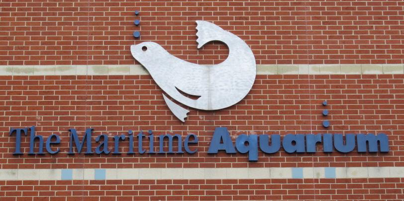 01 Maritime Aquarium.JPG