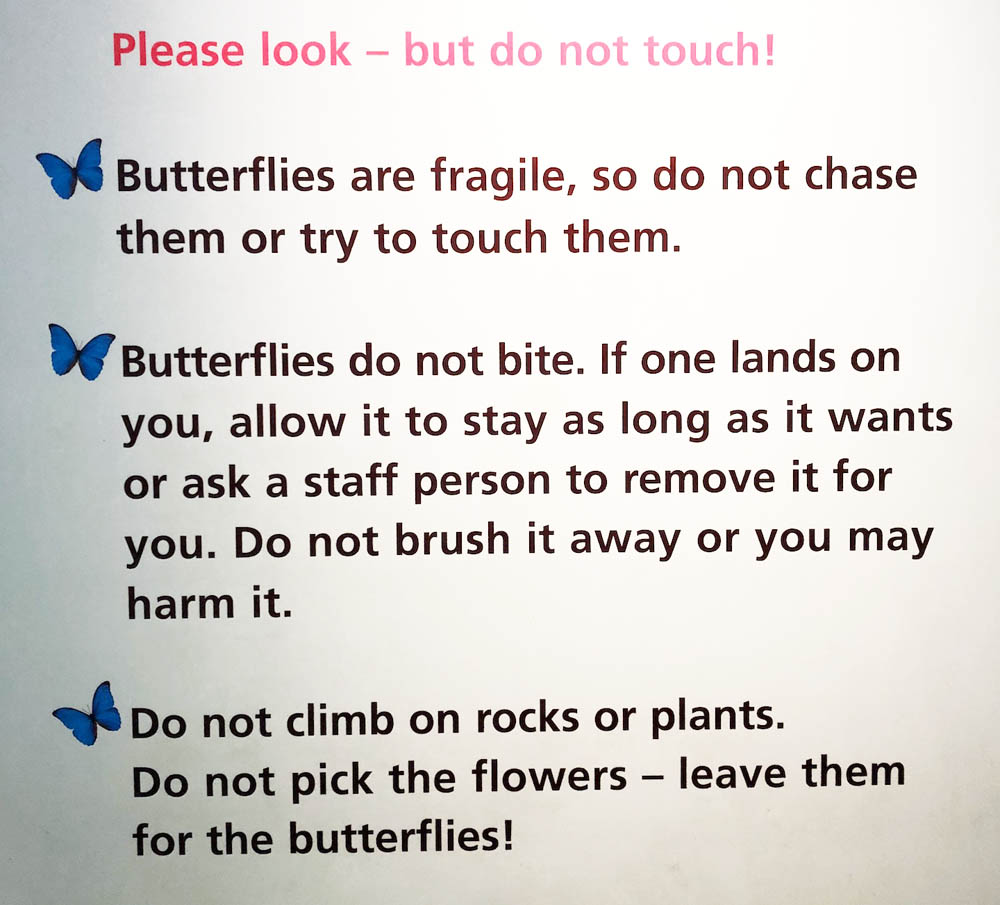 sign for butterflies.jpg