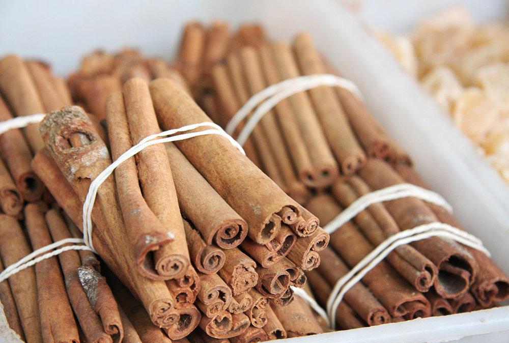 Cinnamon-rachelle robinett.jpg