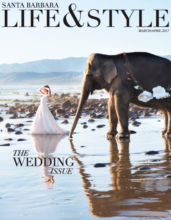 Elephant Bride .png