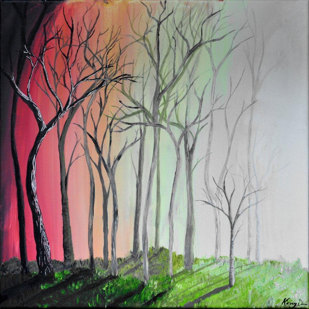 Forest - sunlight