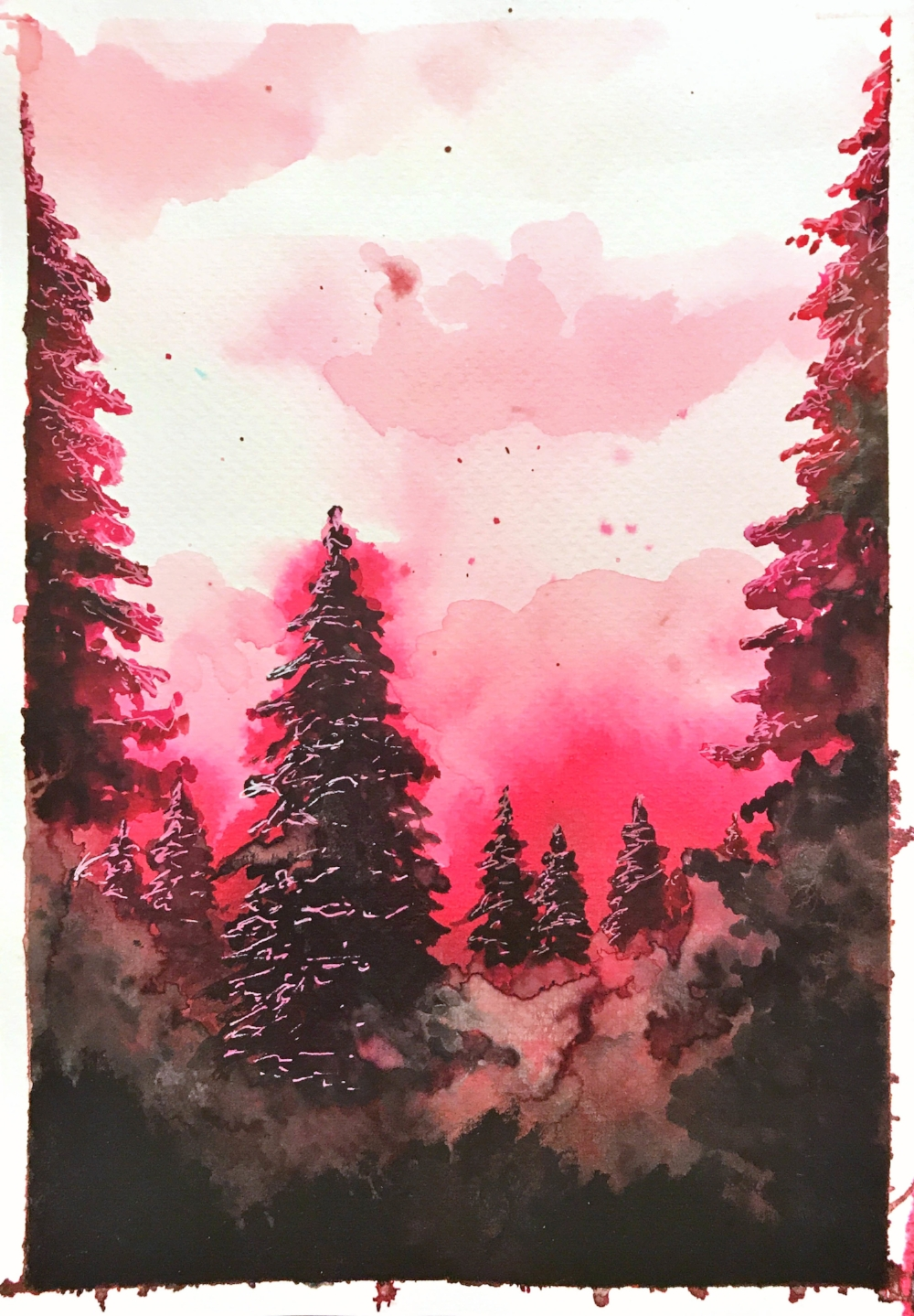 Pine series - red