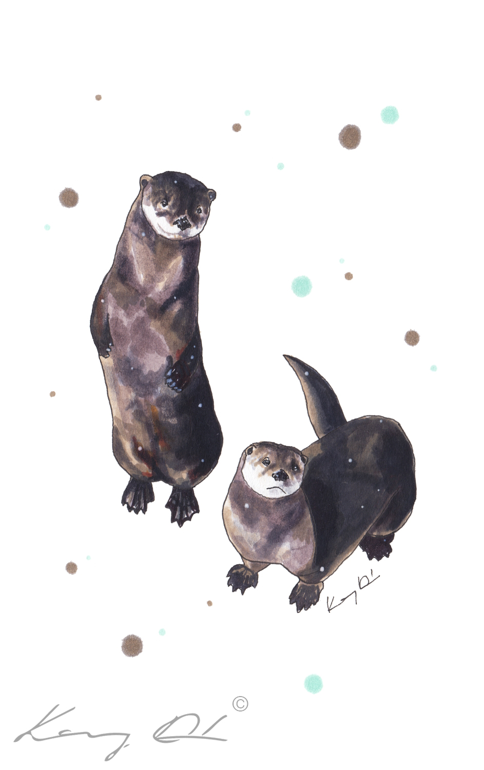 Otter Duo