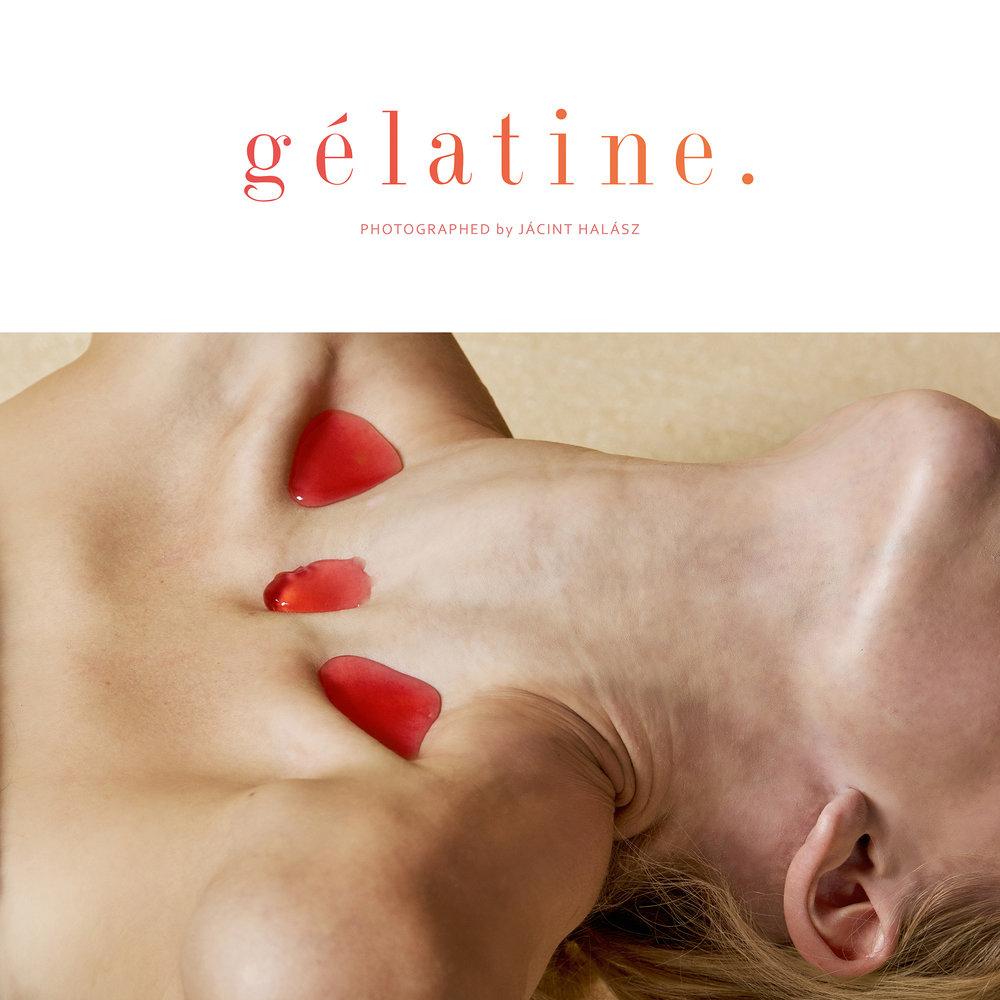Gélatine 1.jpg