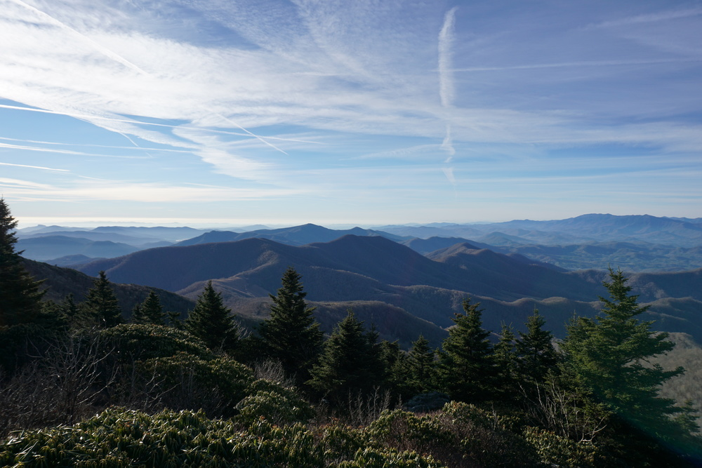 Roan Mountain Album
