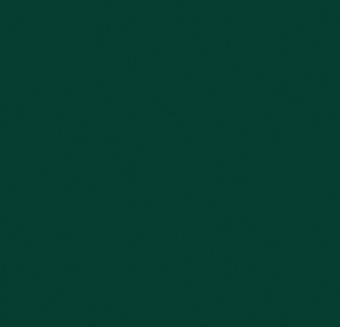 4174 conifer.jpg