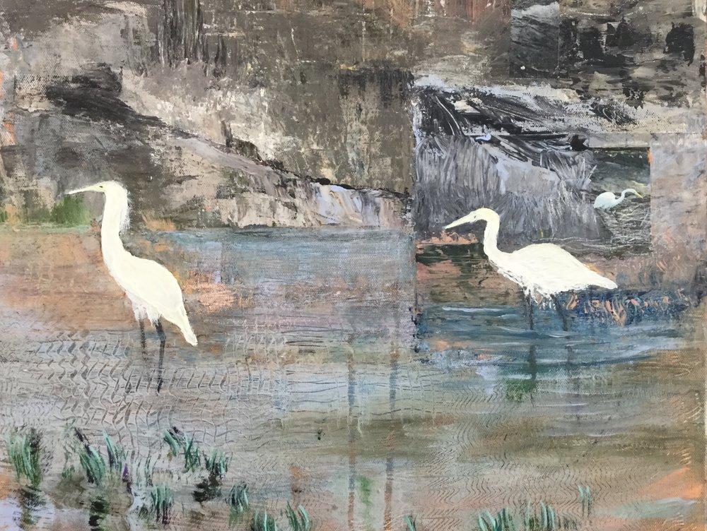 3 Egrets.2015jpg.jpg