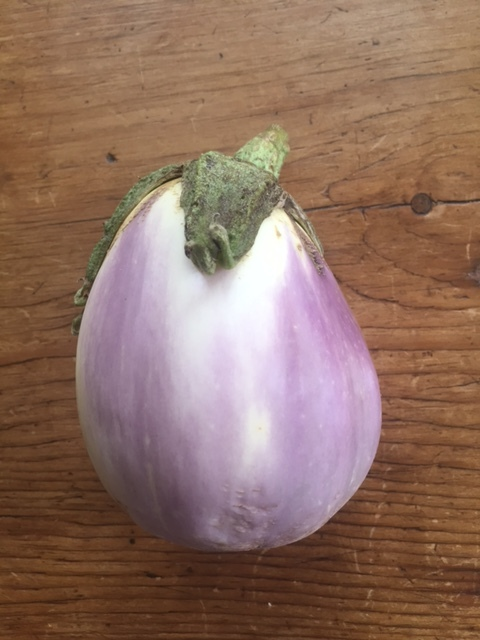 GrafittiEggplant.JPG